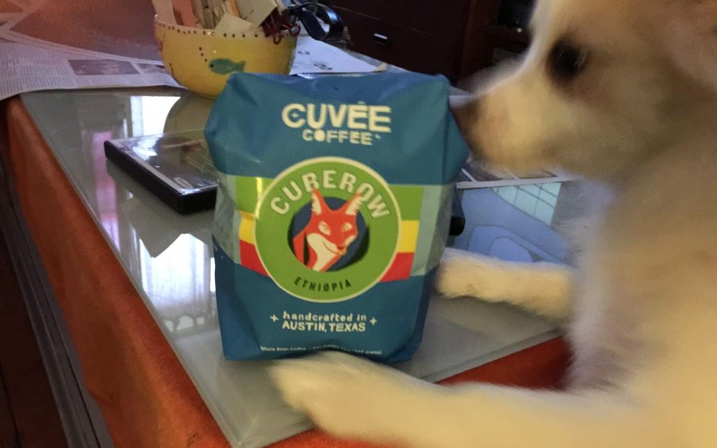 mayor-of-coffee-cuberow