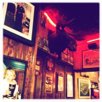 Shark Bar Moose